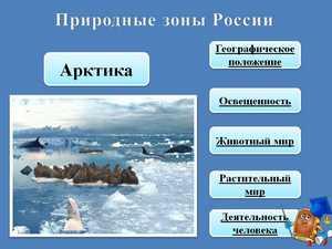 арктика презентация