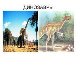 динозавры презентация