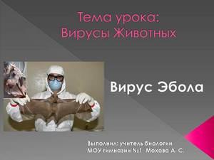 про лихорадку эбола презентация