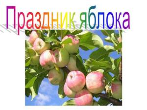 презентация про яблоки